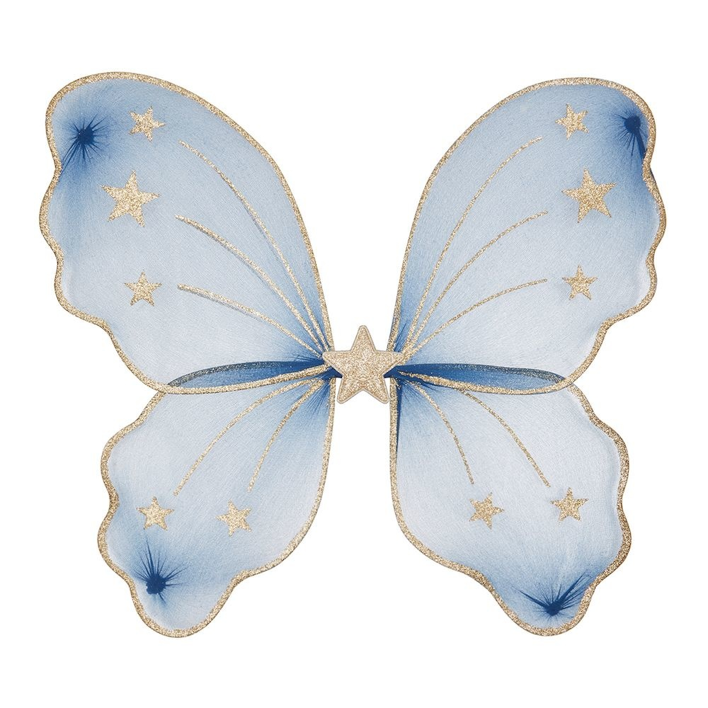 Starry Night Wings Blue-1