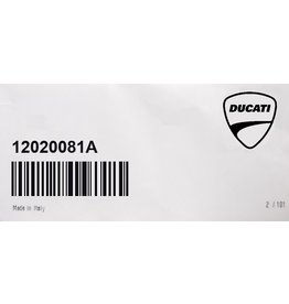 Ducati Horizontal Cylinder-Piston Assy  Ducati 12020081