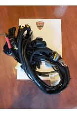 Ducati Ducati 1000 Multistrada Main Wiring Harness 51012381A