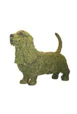 Artopya Hond Basset