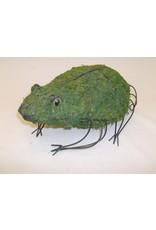 Artopya Chicken Wire Frog