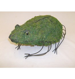 Artopya Chicken Wire Frog