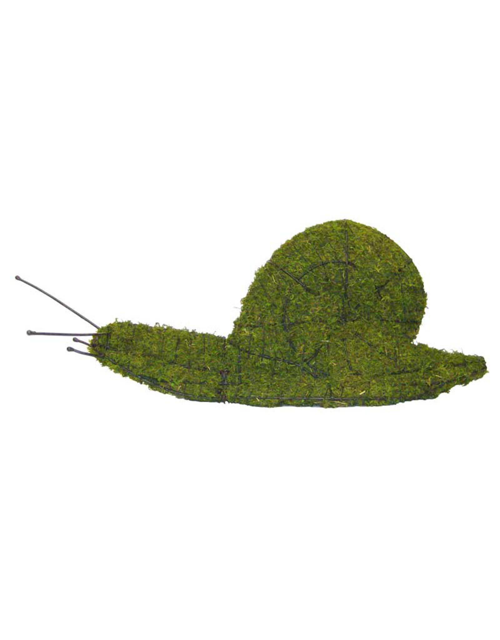 Artopya Snail