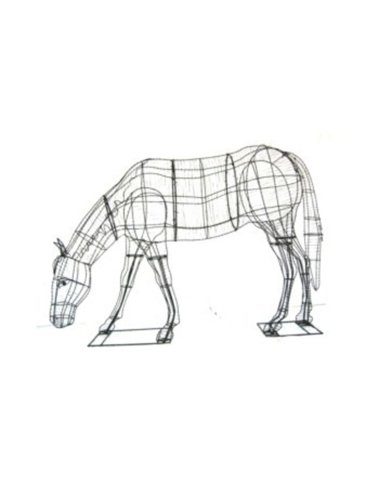Artopya Horse Eating