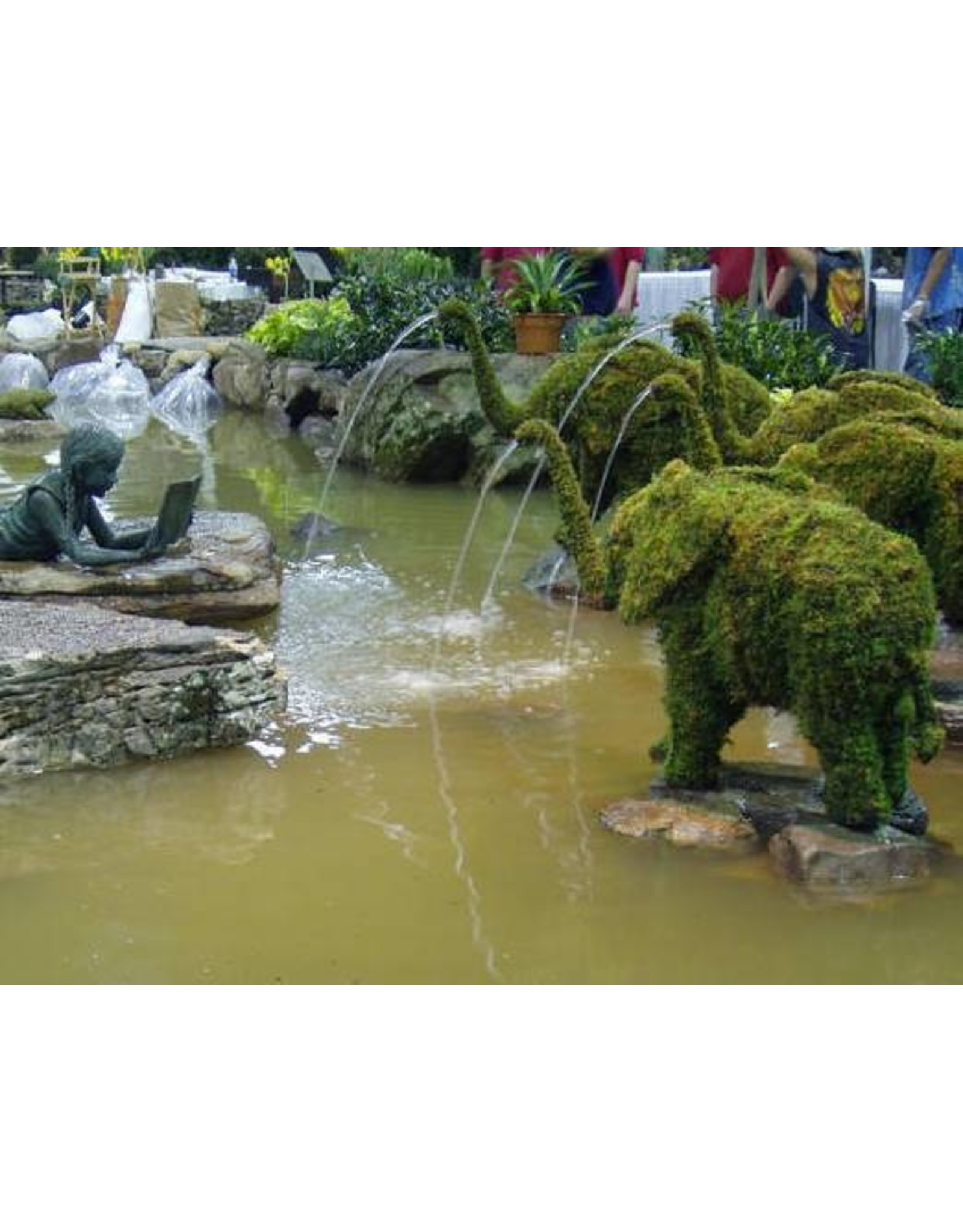Artopya Elephant with water hose