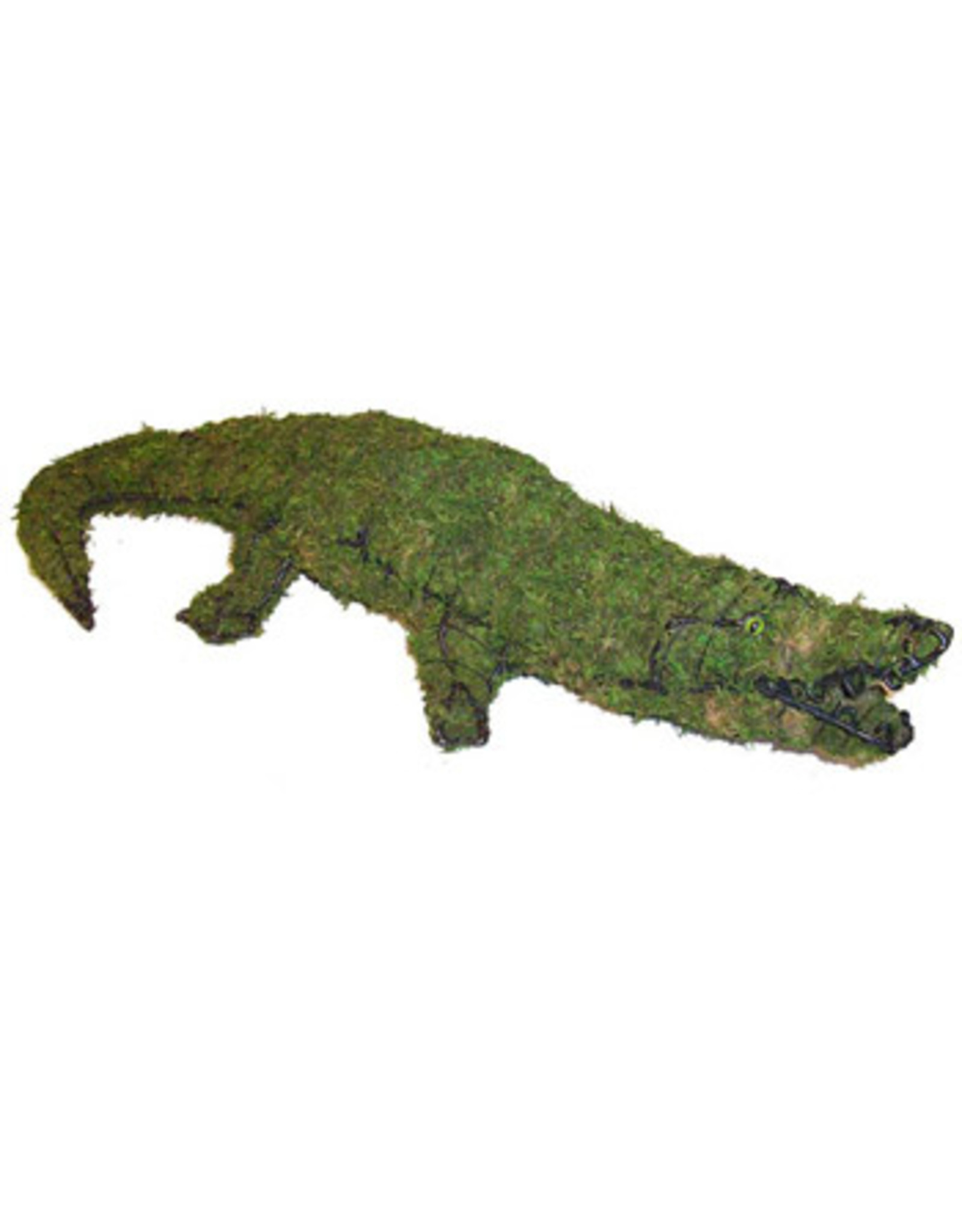 Artopya Krokodil