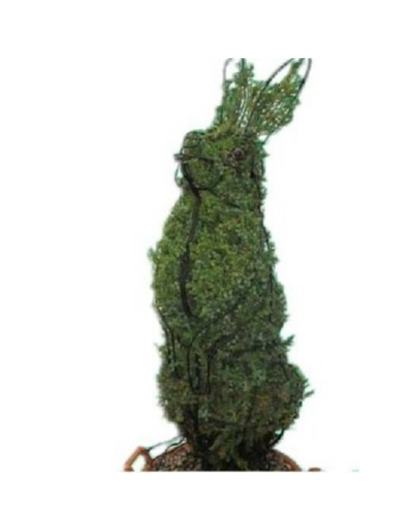 Artopya Topiary Konijn Staand