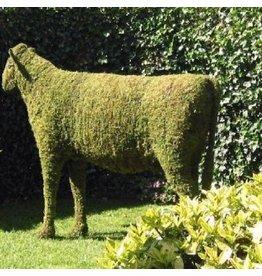 Artopya Cow