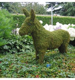 Artopya Donkey
