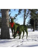 Artopya Deer