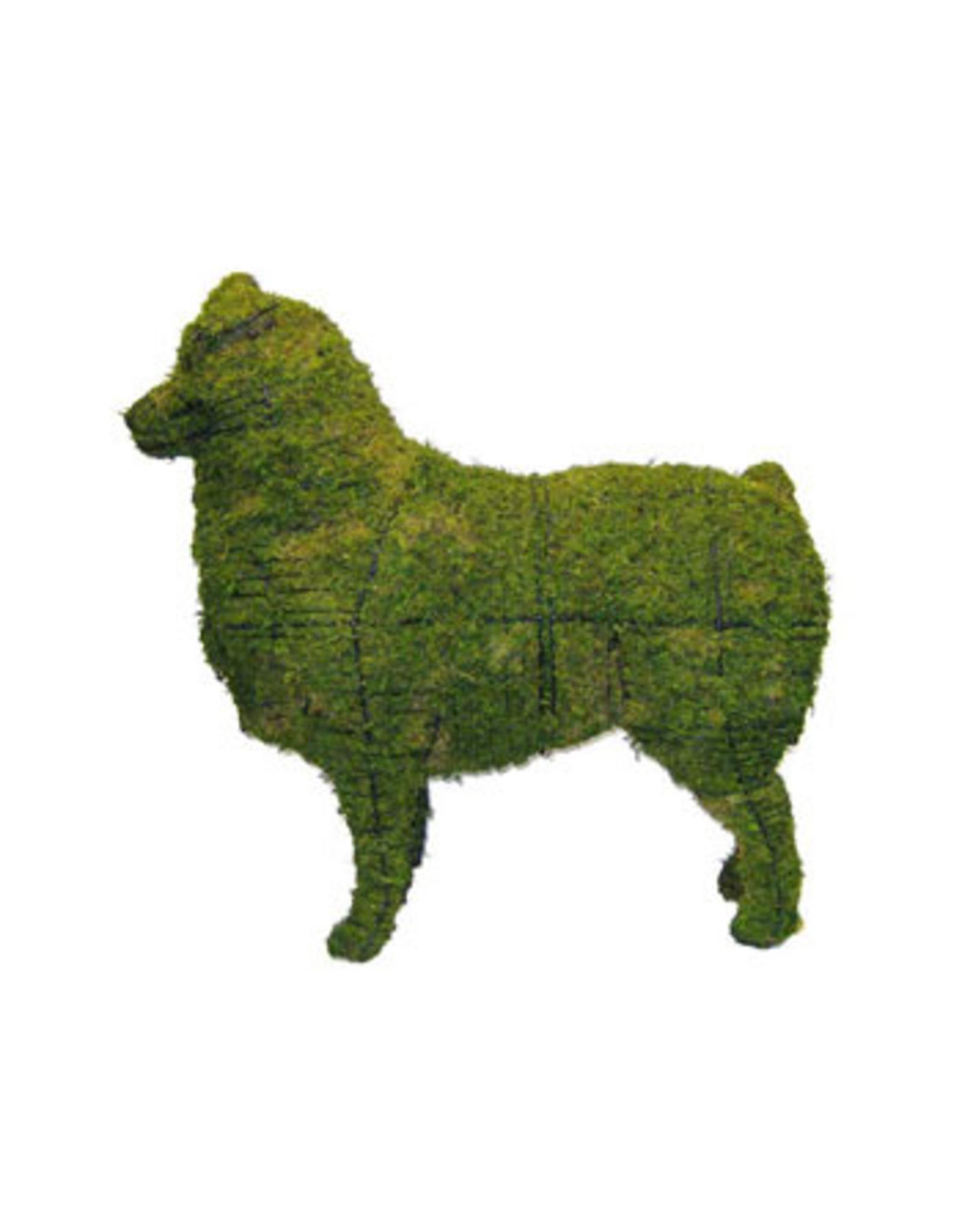 Artopya Hond Australische herder