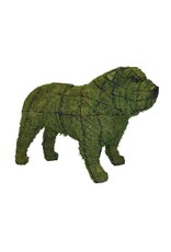 Artopya Dog Bulldog