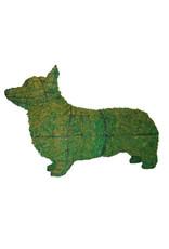 Artopya Hond Corgi