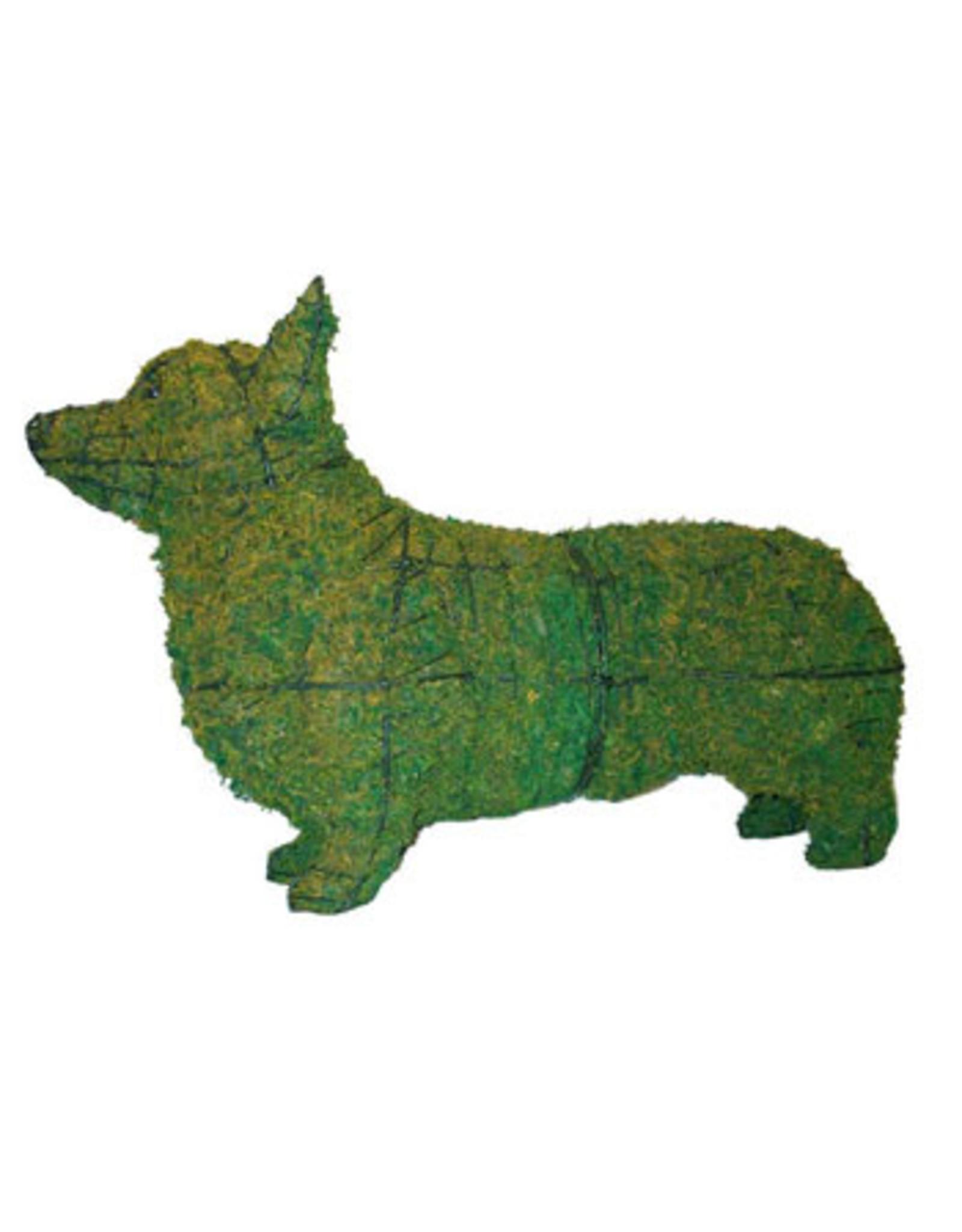 Artopya Dog Corgi