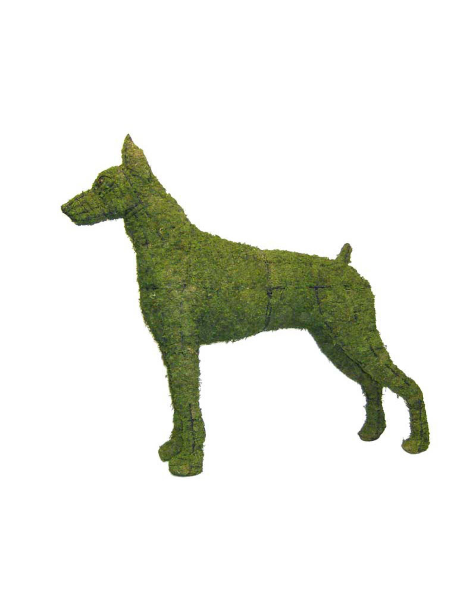Artopya Hond Doberman