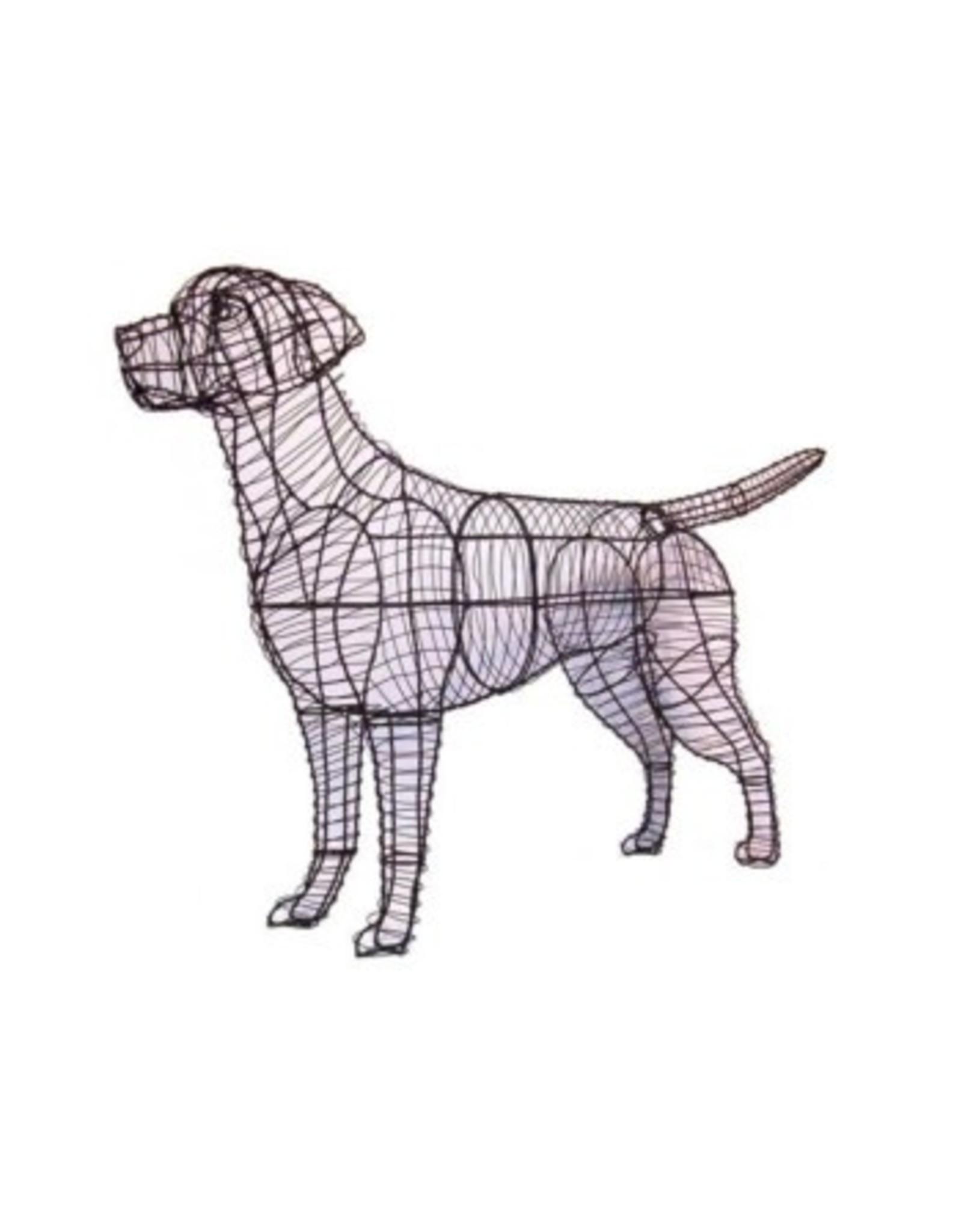 Artopya Hond Labrador Retriever