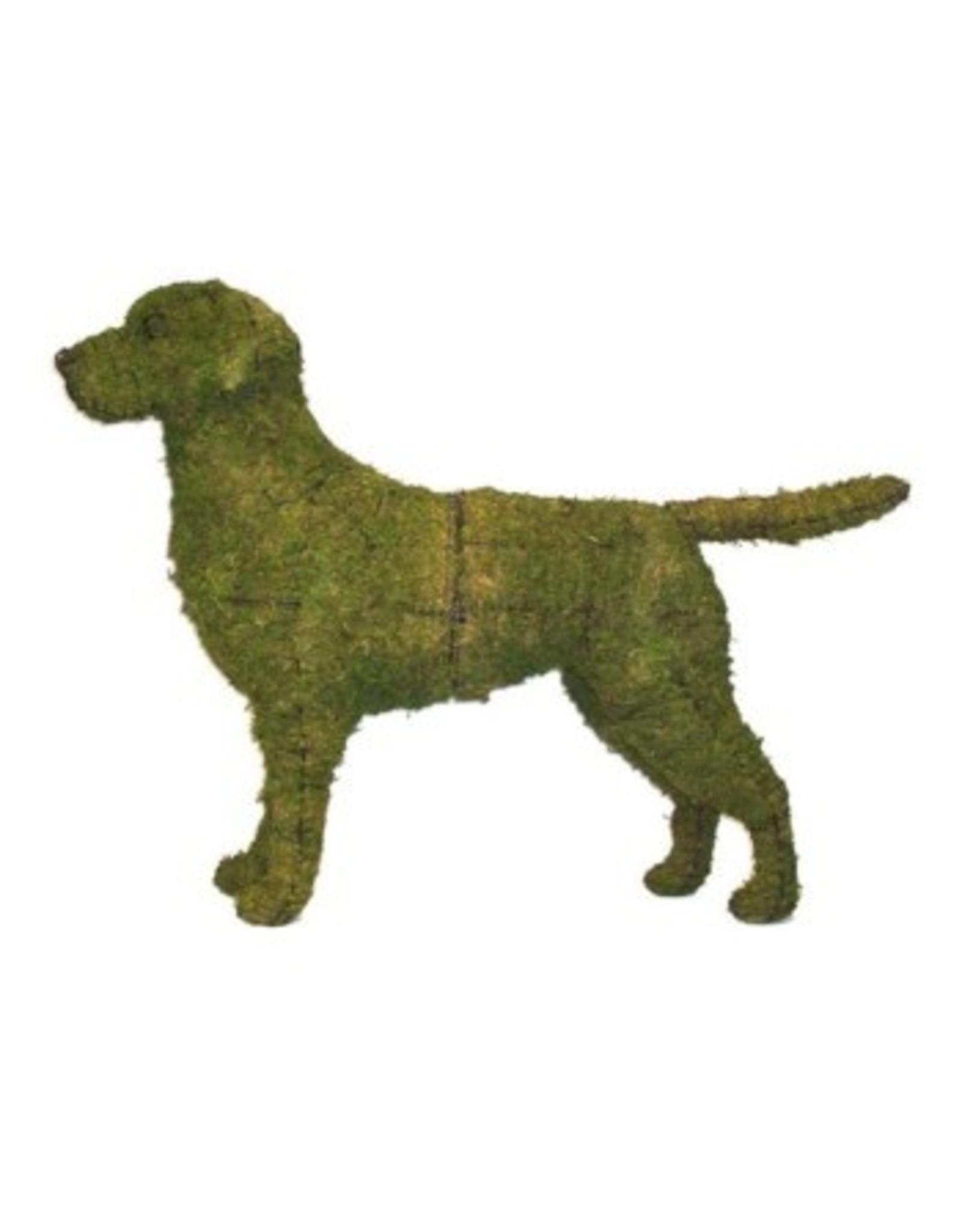 Artopya Dog Labrador Retriever
