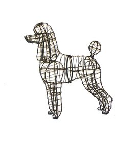 Artopya Dog Poodle Close Wire