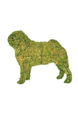 Artopya Hond Pug Mopshond