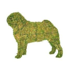 Artopya Dog Pug