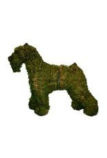 Artopya Hond Schnauzer