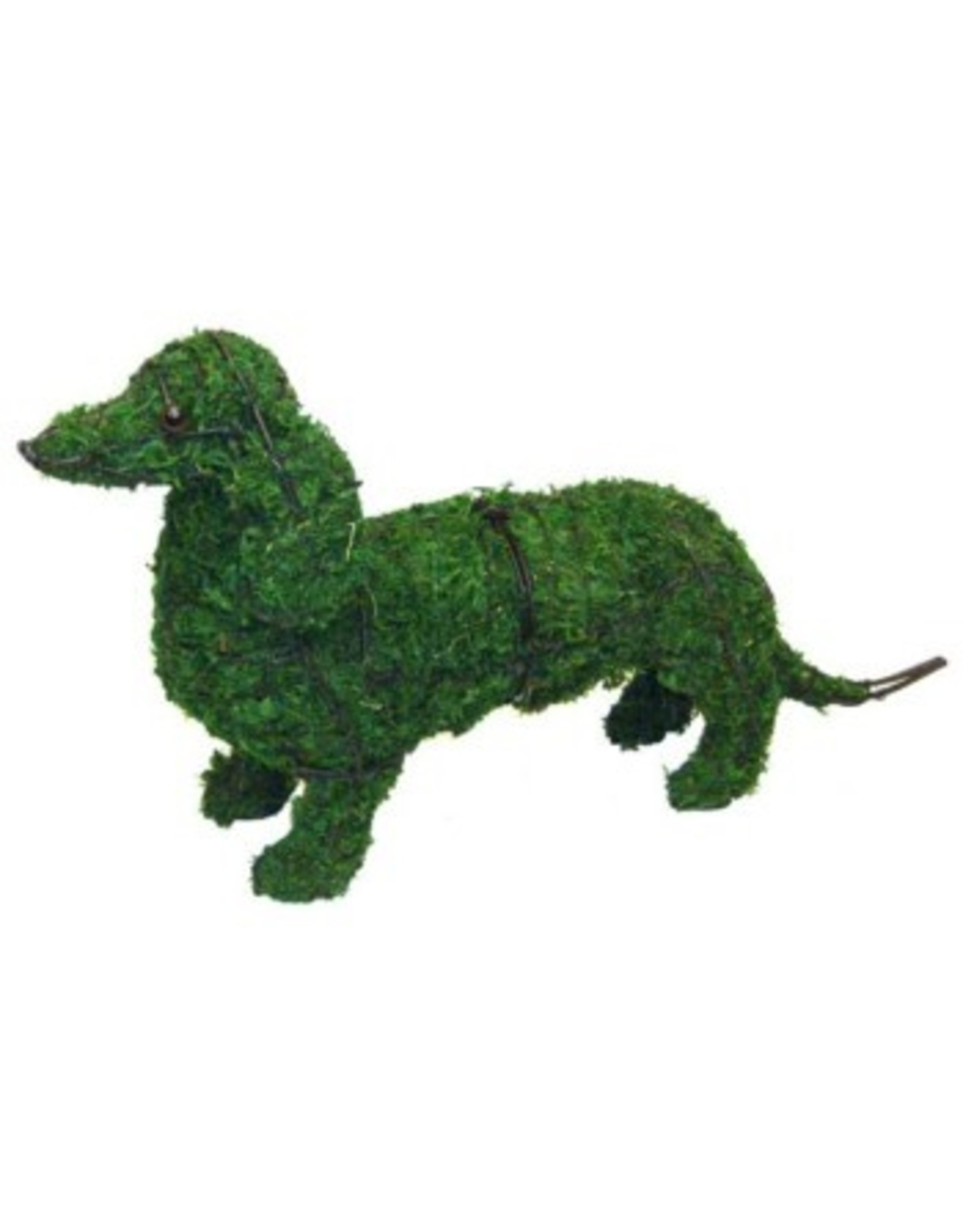 Artopya Hond Teckel