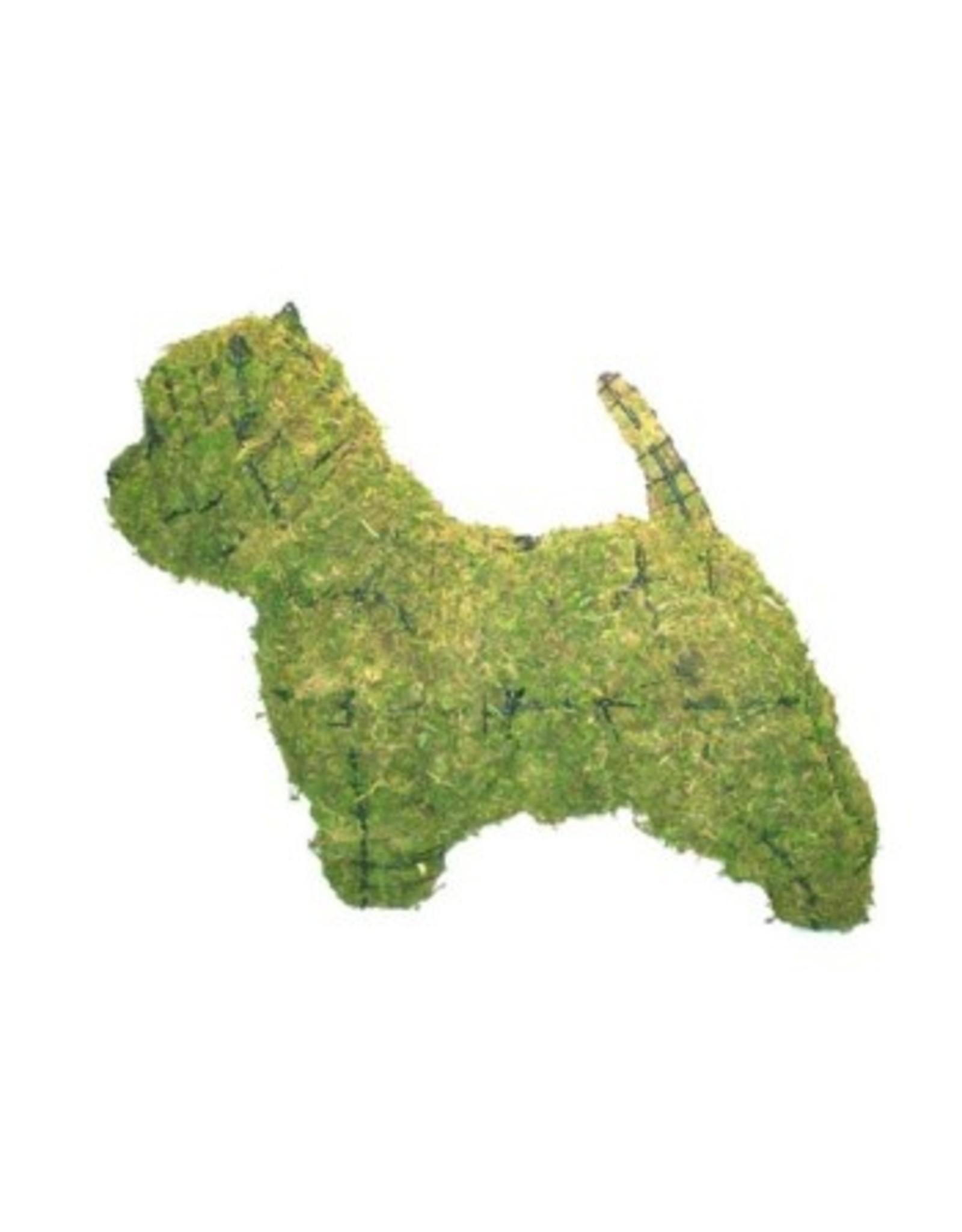 Artopya Hond Westie