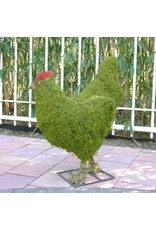 Artopya Chicken