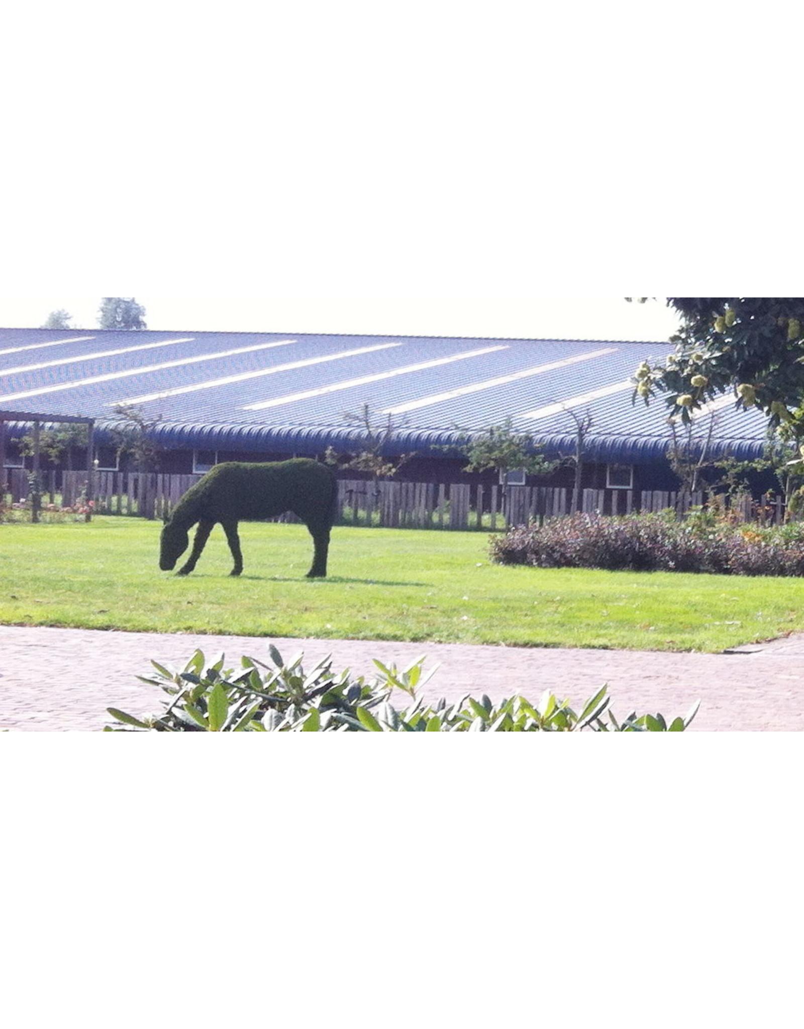 Artopya Paard Etend