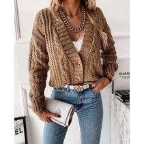 CARDIGAN MUSTHAVE CAMEL
