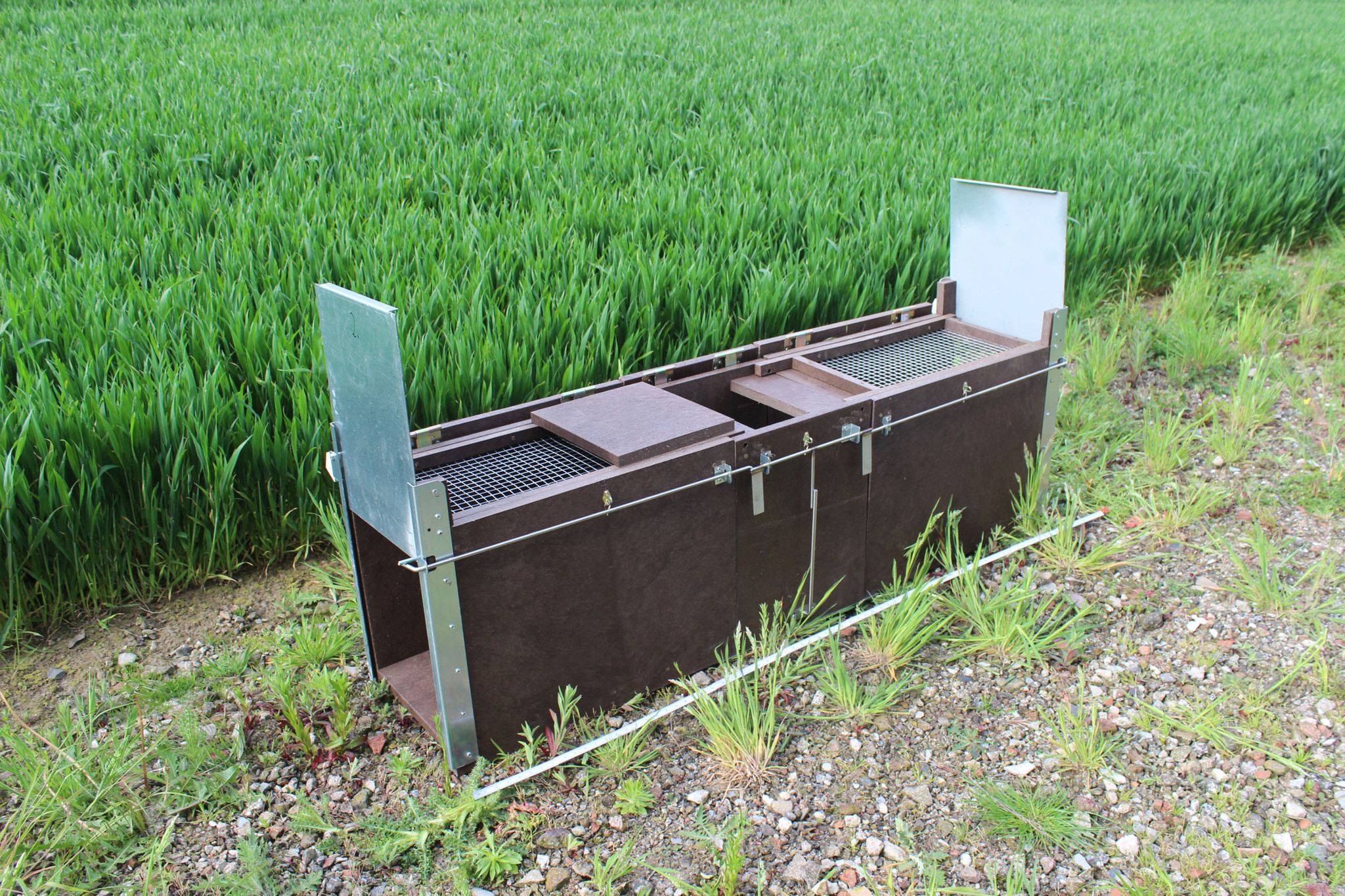 "Kastenfalle nach Hembes Modell ""Trapper-Box EASY"" aus Recyclingkunststoffplatten"