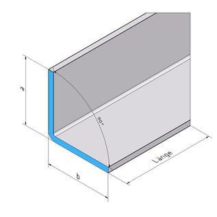 Versandmetall RVS 304 Hoekprofiel Hoekstrip L-Profiel roestvrij Staal gezet gelijk 90° 100x100mm Lengte 1000 mm