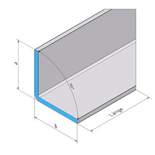 Versandmetall  Edelstahlwinkel 1-fach gekantet aus Edelstahl axb 60x120mm  Länge 2000mm