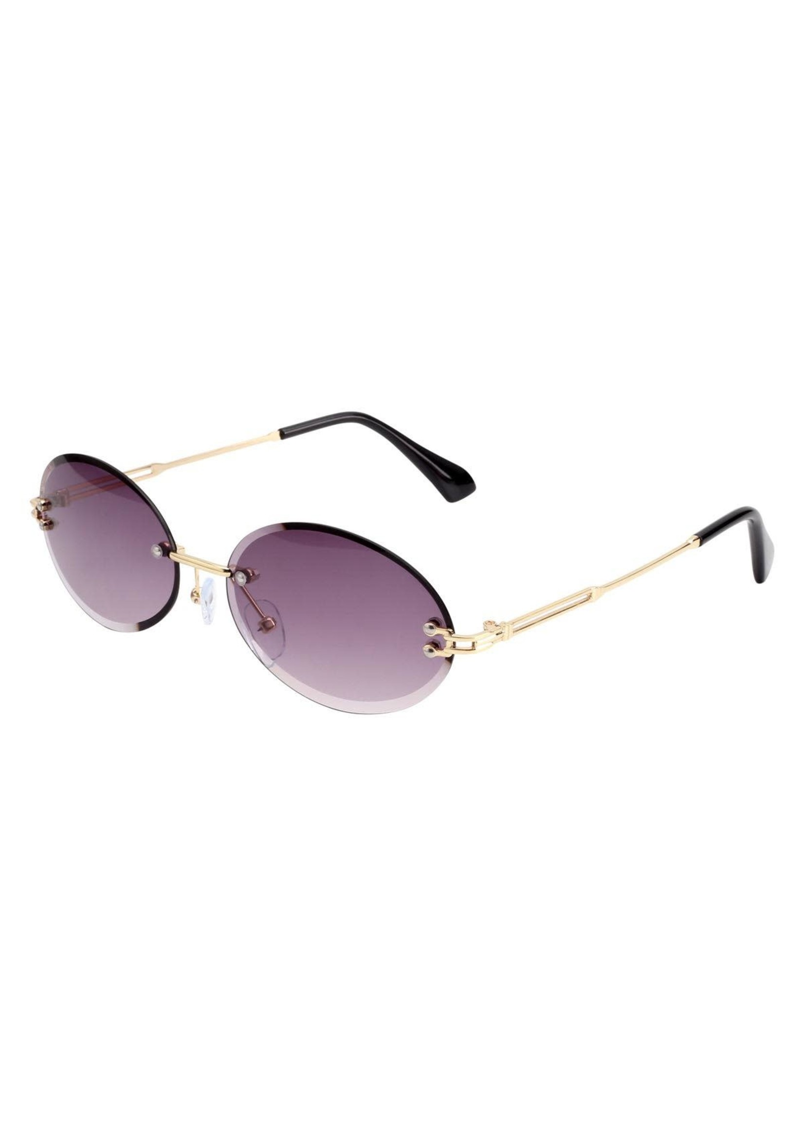 Amsterdam Sunglasses Grey