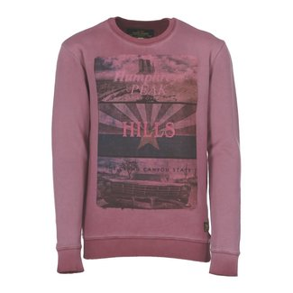 Cars Jeans Sweater Paars