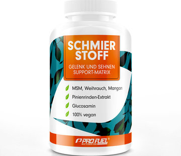 ProFuel MSM SCHMIERSTOFF Voor gewrichten & pezen (120 capsules)