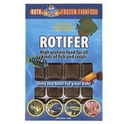 Ruto Ruto red label rotifer