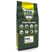 Yourdog Yourdog poedel senior