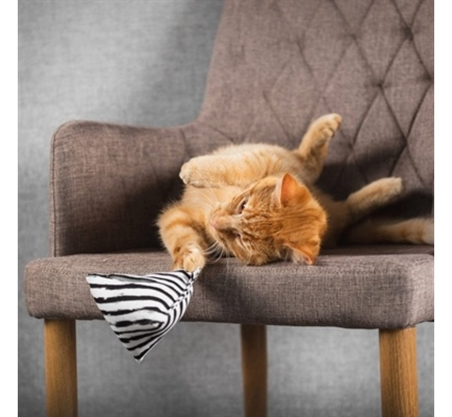 Canadian cat mini pyramide set met catnip zwart / wit