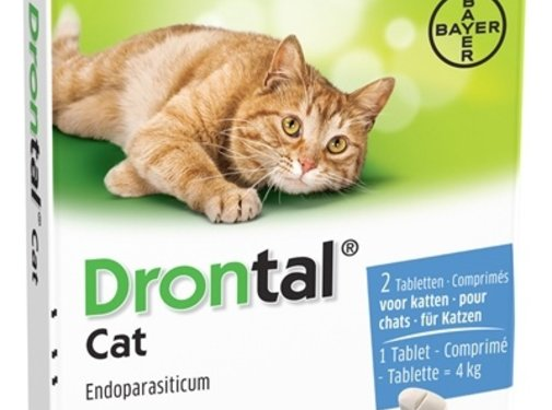 Bayer Bayer drontal ontworming kat