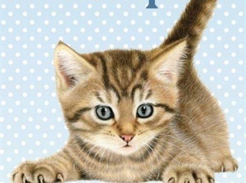 Merkloos Waakbord kunststof franciens katten