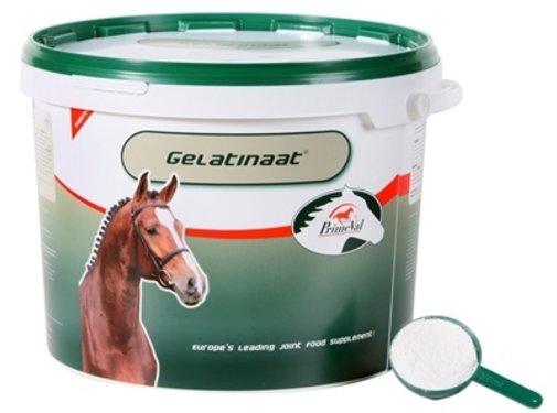 Primeval Primeval gelatinaat voor paarden