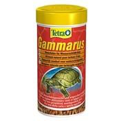 Tetra Tetra gammarus schildpadvoer