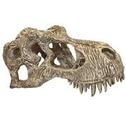 Komodo Komodo t-rex schedel