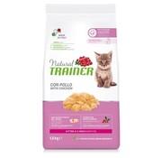 Natural trainer Natural trainer kitten kip