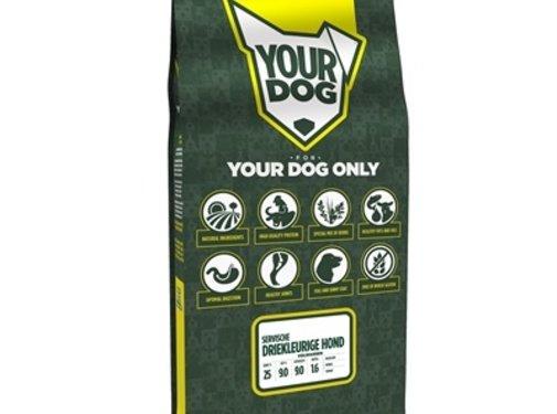 Yourdog Yourdog servische driekleurige hond volwassen