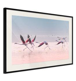 Poster - Flamingos Breaking into a Flight