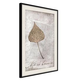 Poster - Dried Leaf