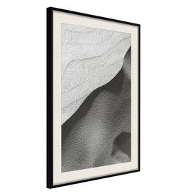 Poster - Beauty of the Desert