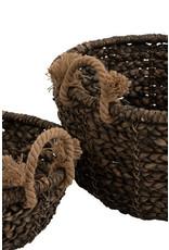 Manden set van 2 Waterhyacint Bruin